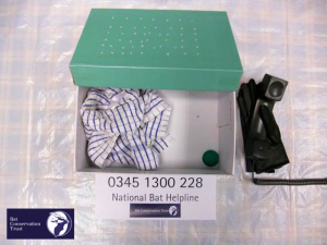 Example Bat Care Box
